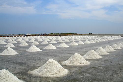 pak-thale-thailand-rice-paddies3