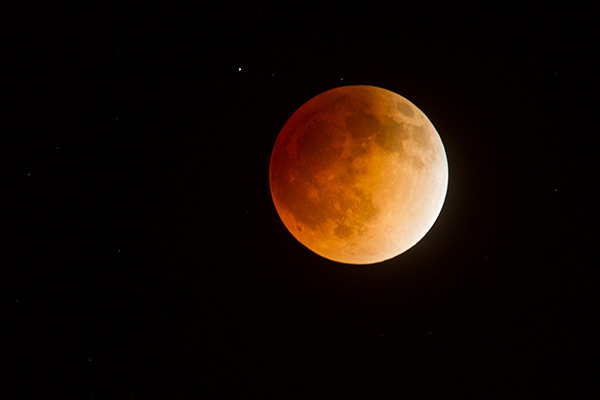 blood moon eclipse in los angeles - photo #9