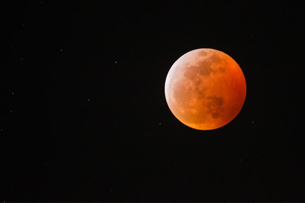 Super Blood Wolf Moon - Lunar Eclipse @ Los Angeles, CA