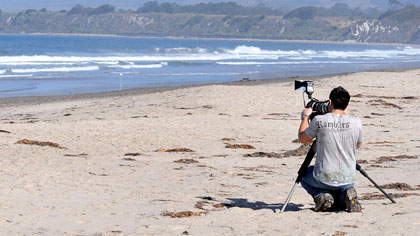 Me photographing Snowy Plovers