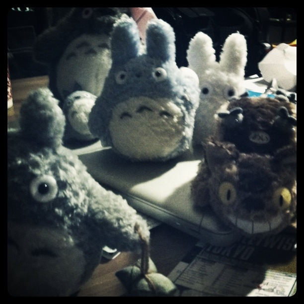 (Totoro with friends and Totoro subspecies)