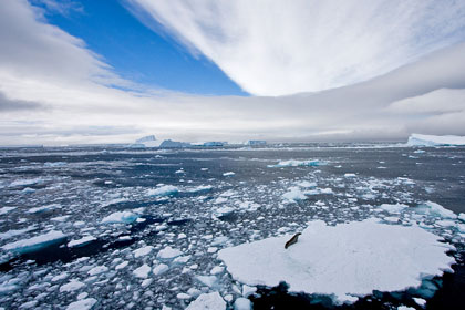 Weddell Sea, Antarctica