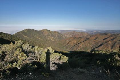 Looking Toward Orange County