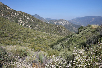 Tujunga Canyon