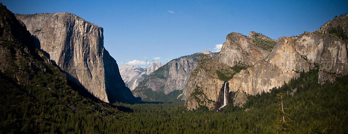 Photography - Bird | Wildlife | Nature - Christopher Taylor - Yosemite ...: kiwifoto.com/f/yosemite_2010